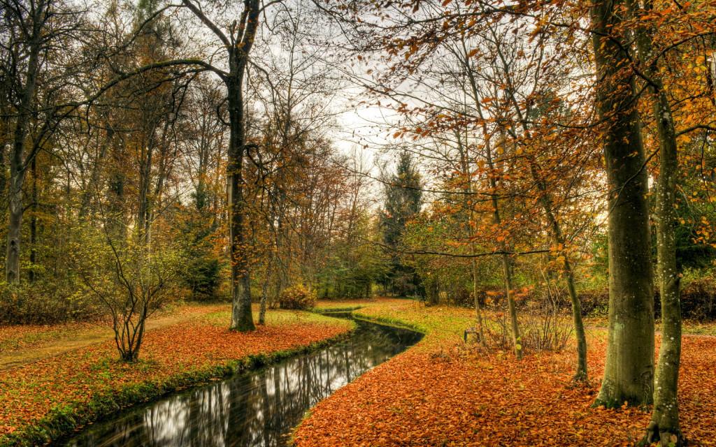 Fonds d 39 cran automne maximumwall - Photo d automne gratuite ...