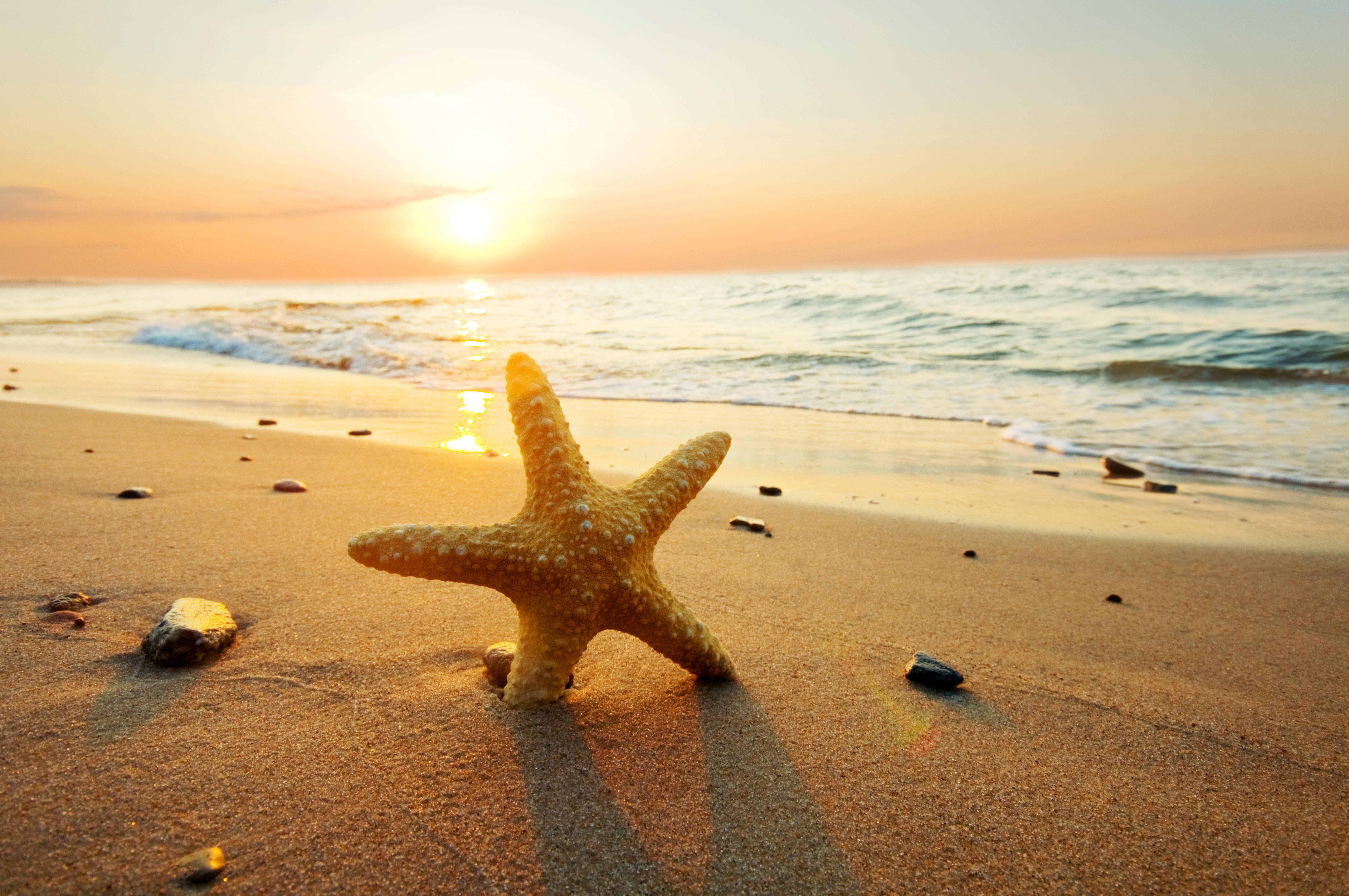 Arri res plans sur coucher de soleil 2015 maximumwall - Fond ecran coucher de soleil sur la mer ...