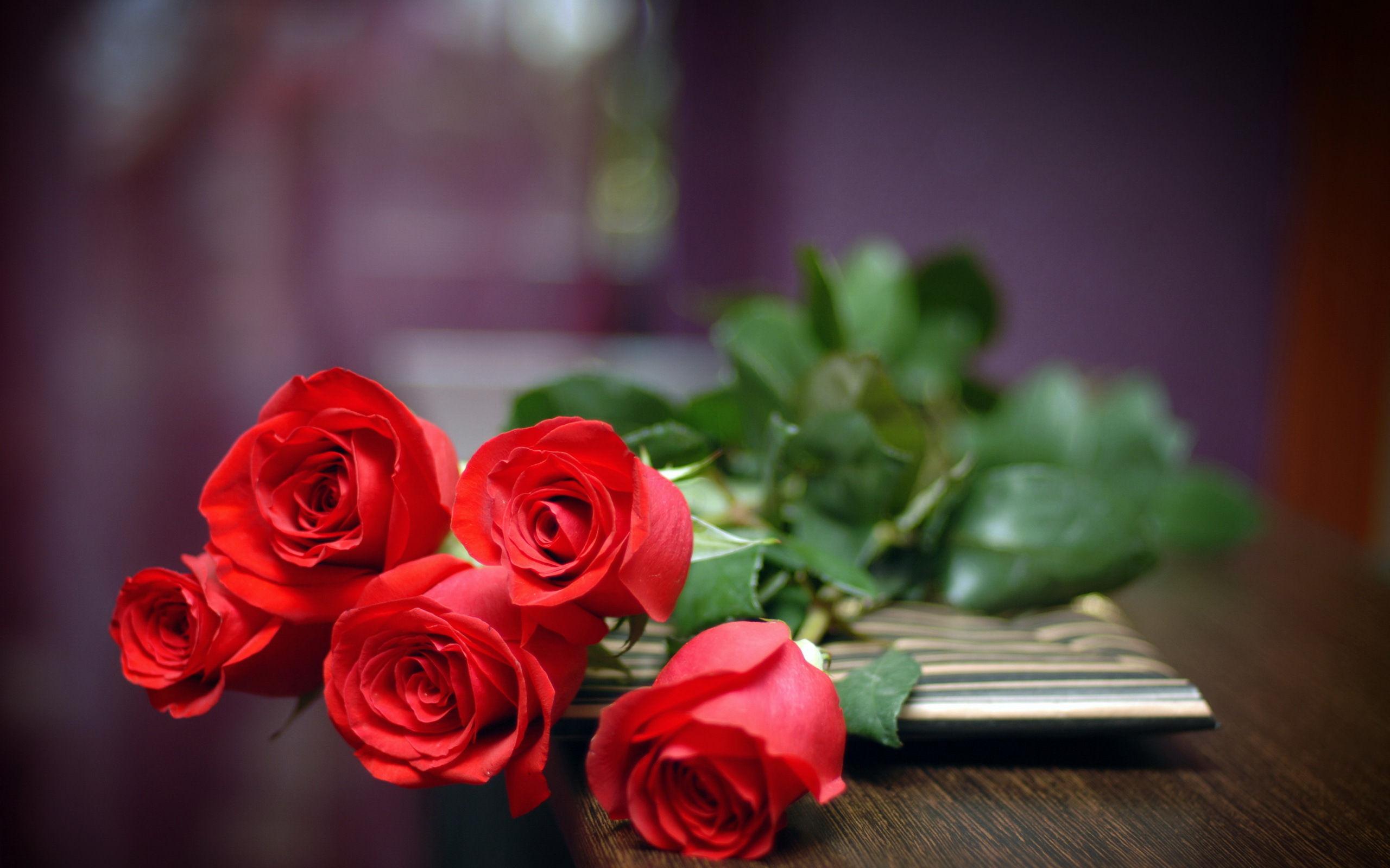 Fonds d 39 cran rose fleur maximumwall - R z love wallpaper ...