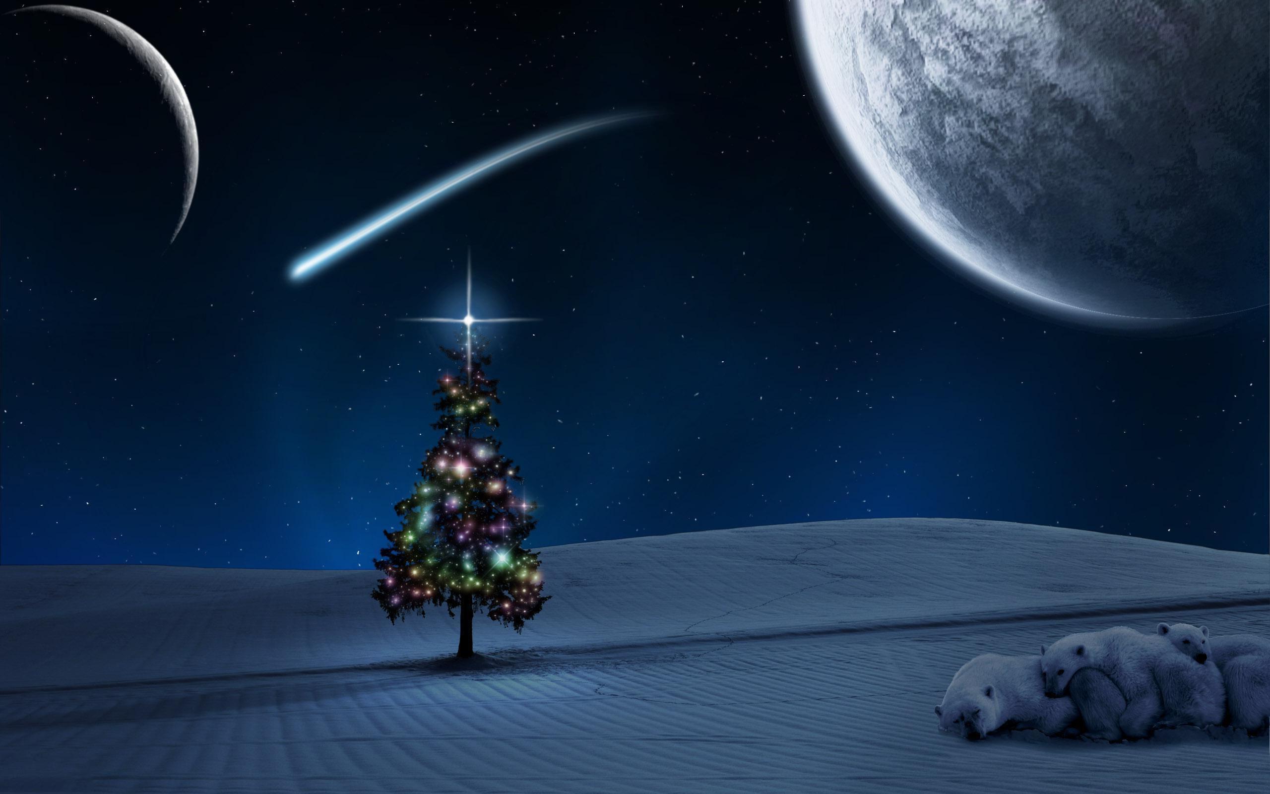 Fonds D écran Noël Paysages Maximumwall
