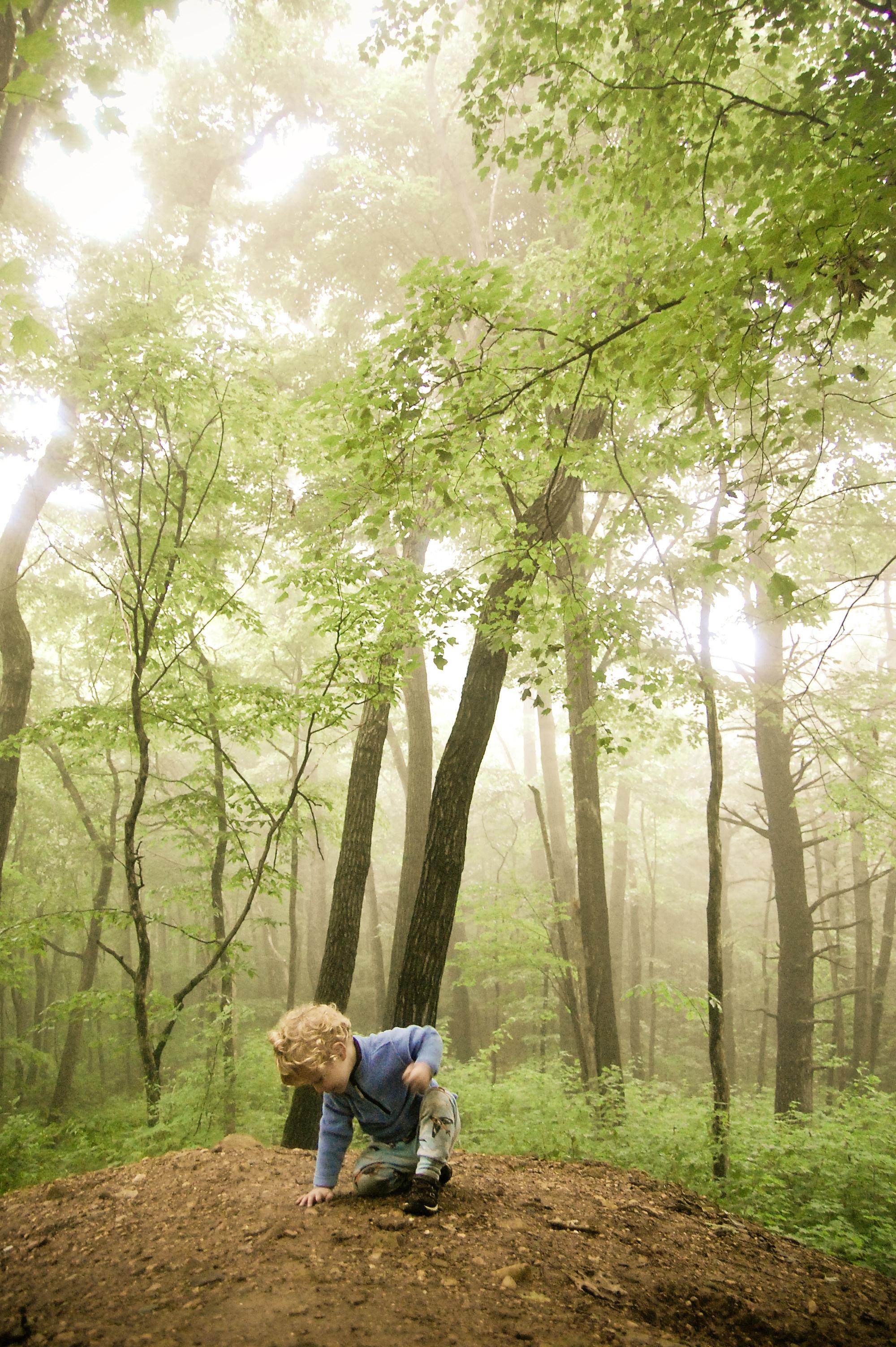 Fonds D'écran Enfant Dans La Nature - MaximumWall